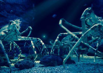 lobster creatures deep see