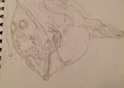 sea creature sketch